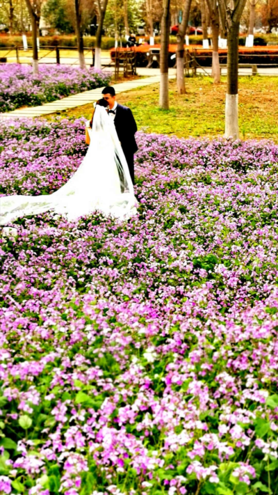 Couple Marries in field of purple flowers | Arizona Reproductive Medicine Specialists