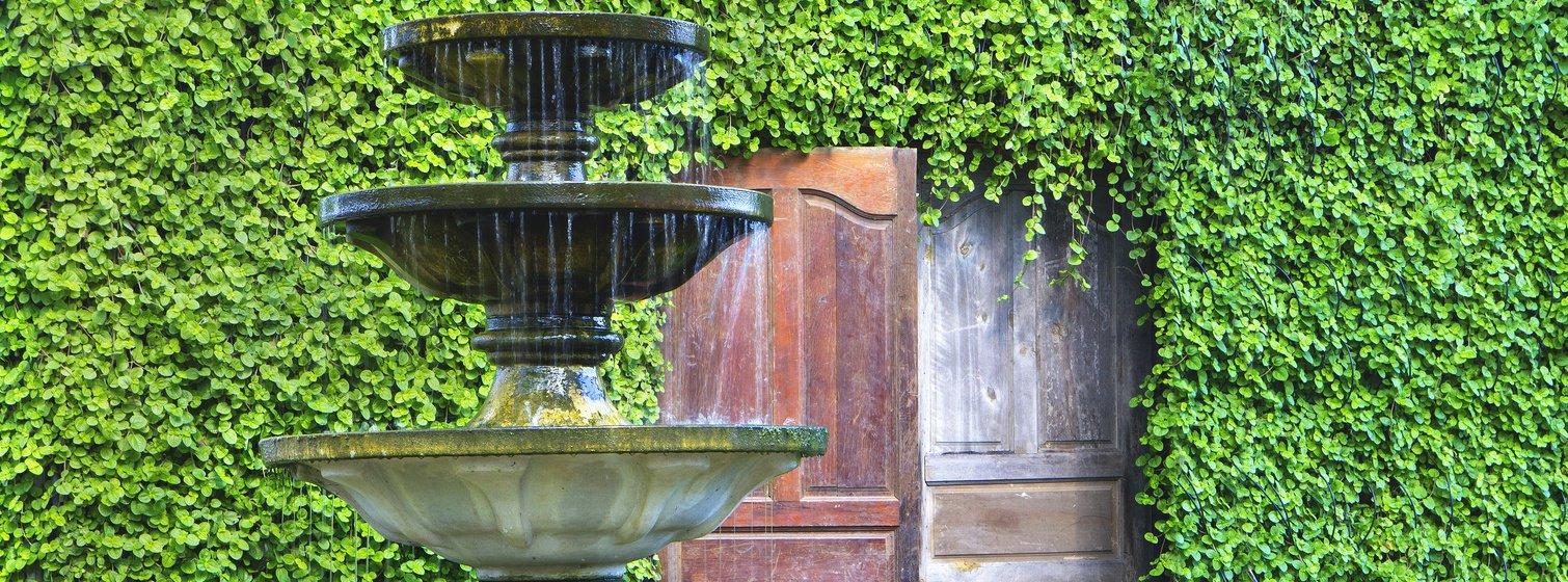 The Fountain Method of Freezing Eggs | ARMS | Phoenix, AZ